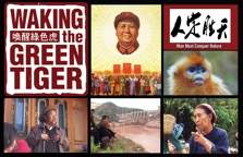 Waking the Green Tiger Film
