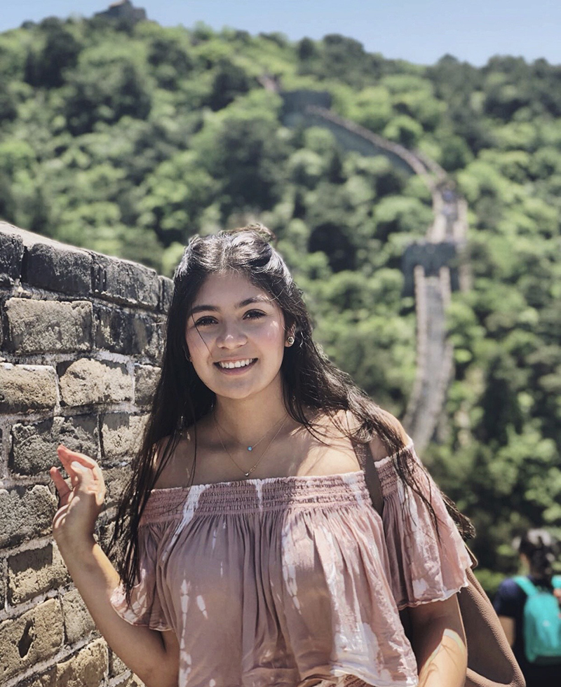 Analis on the Great Wall of China