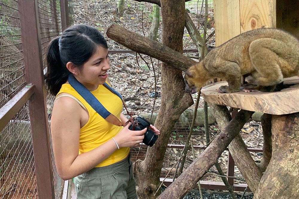 Brianne Estrada looks at a mammal in a sanctuary habitat.